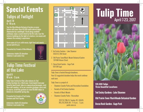 TriFold Tulip Time Page 1