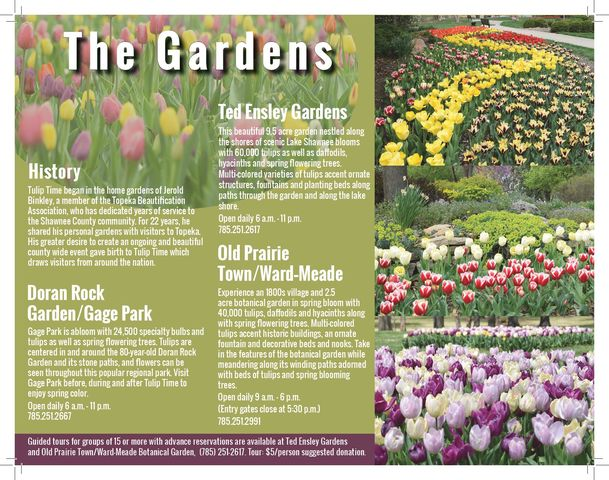 TriFold Tulip Time Page 2